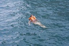 Donna in giubbotto di salvataggio arancione in acqua di un mare Immagine Stock