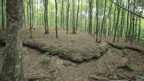 Donna graziosa che cammina nella foresta stock footage