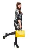 Donna graziosa con il sacchetto della spesa Immagine Stock Libera da Diritti