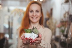 Donna incantante che gode della compera a casa deposito della decorazione immagine stock libera da diritti