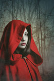 Donna incappucciata rosso scuro in una foresta nebbiosa Fotografia Stock