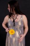 Donna incinta Fotografia Stock
