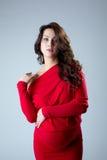 Donna incinta attraente che posa alla macchina fotografica Fotografia Stock