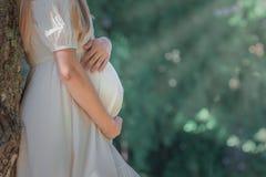 Donna incinta che abbraccia la sua pancia fotografia stock
