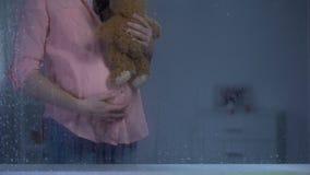 Donna incinta che abbraccia orsacchiotto dietro la finestra piovosa, aspettativa del bambino, cura archivi video