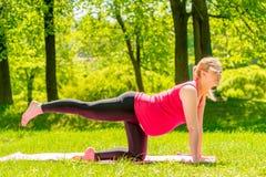 Donna incinta che fa gli esercizi sull'allungamento del corpo Fotografia Stock Libera da Diritti