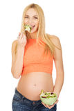 Donna incinta che mangia insalata Fotografia Stock Libera da Diritti