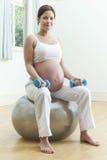 Donna incinta che si siede sulla palla di esercizio con i pesi Fotografia Stock