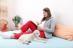 Donna incinta con il suo cane a casa Immagine Stock Libera da Diritti