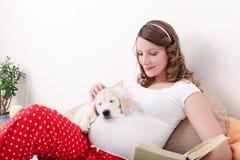 Donna incinta con il suo cane a casa Fotografia Stock