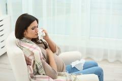 Donna incinta con l'allergia che si siede sulla poltrona Immagini Stock Libere da Diritti