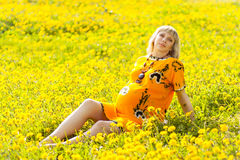 Donna incinta felice Fotografia Stock