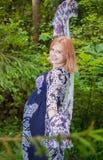 Donna incinta in legno Fotografia Stock
