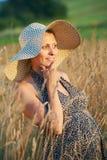 Donna incinta nel campo Fotografia Stock