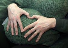 Donna incinta sul di sette mesi Fotografia Stock Libera da Diritti