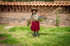 Donna indiana peruviana nella tessitura tradizionale del vestito Fotografia Stock