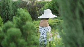 Donna invecchiata mezzo in cappello e vestito del sole fra gli alberi e l'erba verdi archivi video