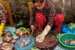Donna khmer che vende il mercato del pesce Siem Reap, Cambogia Fotografia Stock Libera da Diritti