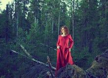 Donna la foresta mistica Fotografia Stock