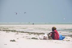 Donna locale che ordina alga coltivata, Zanzibar Fotografia Stock