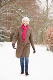 Donna maggiore che cammina attraverso il terreno boscoso dello Snowy Immagini Stock