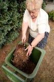 donna maggiore di giardinaggio Immagini Stock Libere da Diritti