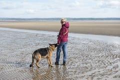 Donna matura che gioca con il suo cane alsaziano Immagini Stock
