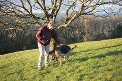Donna matura che gioca con il suo cane di alsaziano dell'animale domestico Immagini Stock