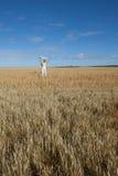 Donna matura felice nel campo di frumento Immagine Stock Libera da Diritti