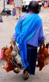 Donna Mayan con i polli immagini stock