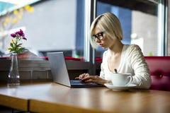 Donna messa a fuoco giovani che lavora al computer portatile in caffè Fotografie Stock Libere da Diritti
