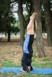 Donna muscolare che risolve su uno sfondo naturale Forte donna anziana di yoga Concetto duro di yoga Immagine Stock