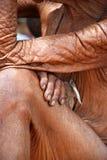 Donna namibiana anziana Fotografie Stock