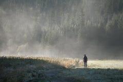 Donna in nebbia Fotografia Stock