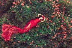 Donna nel campo del papavero del fiore di estate Fotografia Stock