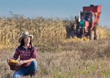 Donna nel campo di grano Immagini Stock
