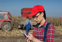 Donna nel campo di grano Fotografia Stock Libera da Diritti
