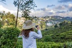 Donna nel cappello che prende foto delle piantagioni di tè facendo uso del telefono fotografia stock libera da diritti