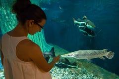Donna nel oceanarium vicino al pesce del luccio dell'alligatore Immagine Stock