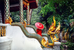 Donna nel tempio in Tailandia del Nord Fotografia Stock Libera da Diritti