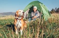 Donna nella sua mattina di raduno del cane del cane da lepre in tenda di campeggio turistica fotografie stock