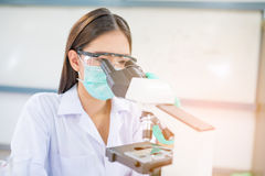 Donna o chimico di medico che lavora con il microscopio Immagini Stock Libere da Diritti