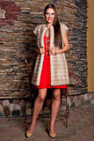 Donna in pelliccia di lusso del cincillà Fotografie Stock Libere da Diritti