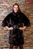 Donna in pelliccia nera di lusso Immagini Stock Libere da Diritti