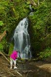 Donna pensionata che prende le immagini di una cascata Fotografia Stock
