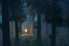 donna persa nella foresta Immagini Stock Libere da Diritti