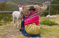 Donna peruviana Immagine Stock