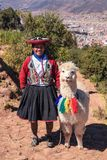 Donna peruviana con la lama in Cusco Immagini Stock Libere da Diritti