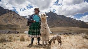 Donna peruviana con la lama e l'alpaga Immagini Stock Libere da Diritti