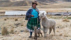 Donna peruviana con la lama e l'alpaga Fotografia Stock Libera da Diritti